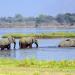 Die wilden Flüsse Afrikas