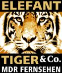 Elefant,Tiger & Co.