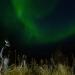 Siegrist und die Polarlichter
