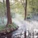 Spreewald - Labyrinth des Wassermanns