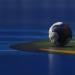Bundesliga der Frauen 2020/21