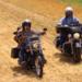 Bilder zur Sendung: Hairy Bikers US