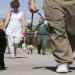 Bilder zur Sendung: Prison Dogs