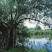 Bilder zur Sendung: Der Untergang der Donauauen