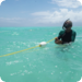 Bilder zur Sendung: Die Meeresg�rtner von Sansibar