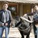 Bilder zur Sendung: Die Büffel sind los