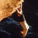 Bilder zur Sendung: Mission: Impossible 2