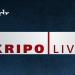 Kripo live