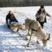 Bilder zur Sendung: Sagenhaft - Das Weihnachtsland