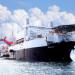 Megaschiffe - Giganten der Meere