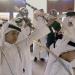 Unbekanntes Arabien