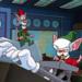 Bilder zur Sendung: Pinky und der Brain
