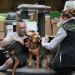 Harte Hunde - Ralf Seeger greift ein