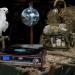 Fünf Farmies - Tierisch wilde Scheunenfreunde