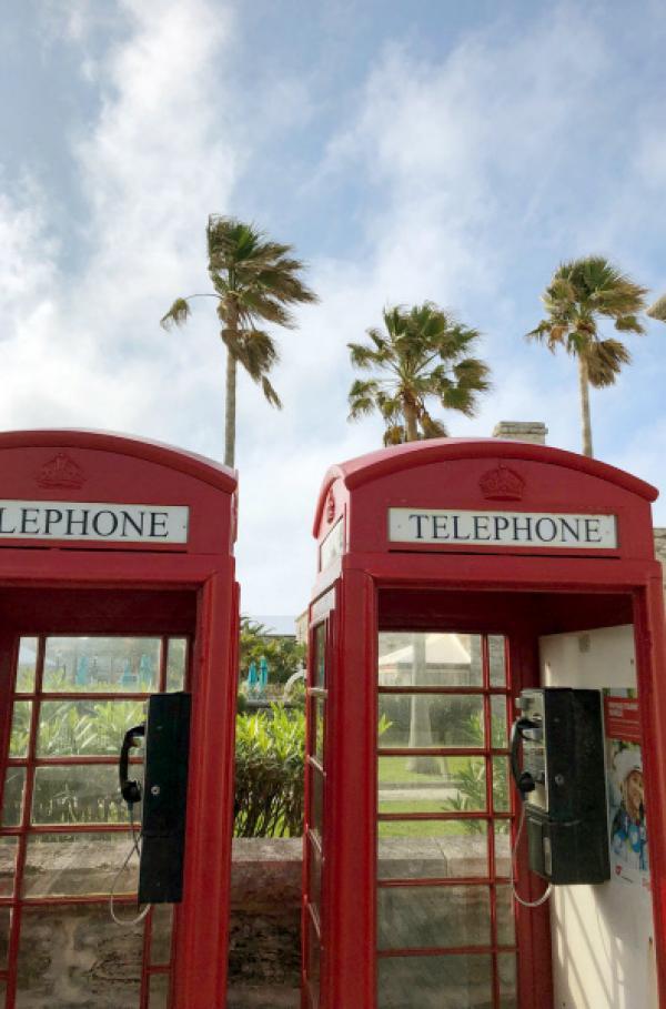 Bild 1 von 7: Britische Telefonzellen unter Palmen sind das Markenzeichen des Überseegebiets Bermuda.