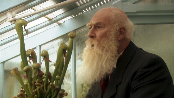 """Bild 1 von 4: Der greise Darwin (Christopher Robbie) forschte vor allem an Pflanzen. Entnervt von den Anfeindungen der Gesellschaft, hatte er beschlossen: """"Ich werde mich nie mehr mit theoretischen Fragen beschäftigen."""""""