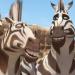 Bilder zur Sendung: Khumba - Das Zebra ohne Streifen