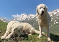 Graubünden - Wo die Schweiz den Himmel berührt