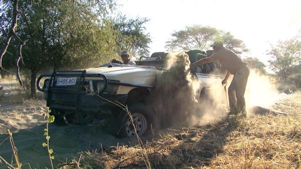 Bild 1 von 9: Festgefahren in der Wildnis Botswanas.