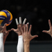 Volleyball Live - Bundesliga
