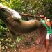 In der Hängematte auf dem Amazonas