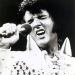 Elvis-O-Rama
