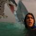 Bilder zur Sendung: Sharktopus vs. Pteracuda - Kampf der Urzeitgiganten