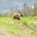 Abenteuer extrem - Kanada mit Charley Boorman