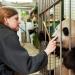 Bilder zur Sendung: Schönbrunner Tiergeschichten - Leben im Zoo