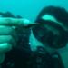 Bilder zur Sendung: Atlantis im Mittelmeer