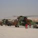 Der Tiger: Militär-Helikopter im Einsatz