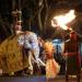 Kandys Perahera - Elefantenprozession in Sri Lanka