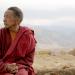 Das Kind, der Lama und der Lauf der Dinge