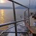 Perlen vor Kroatiens Küste