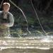 Traun - Ein Fluss wie ein Kristall