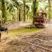 Landraub - Die globale Jagd nach Ackerland