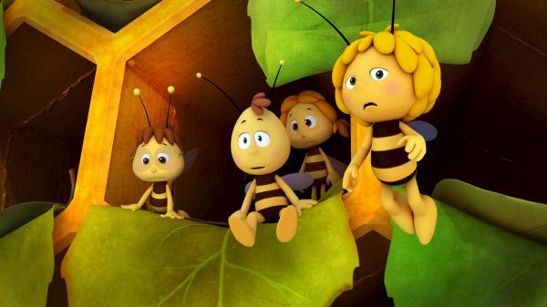 Bild 1 von 5: Es gibt kaum noch Platz im Bienenstock.