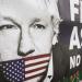 Der Fall Assange - Die Geschichte von WikiLeaks