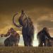 Mammuts - Stars der Eiszeit