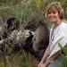 Bilder zur Sendung: Südafrika - Naturschutz am Kap