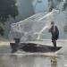 Kinabatangan - Der Amazonas des Ostens