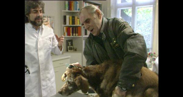Bild 1 von 3: Auch Hunde brauchen Ärzte.