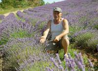 Kräuterwelten der Provence