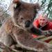 Bilder zur Sendung: Australien - Das Abenteuer