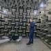 Brain Beats: Eine Reise in die Zukunft des Hörens