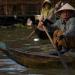 Wildes Indochina