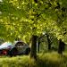 Motorsport - FIA World Rallycross Championship