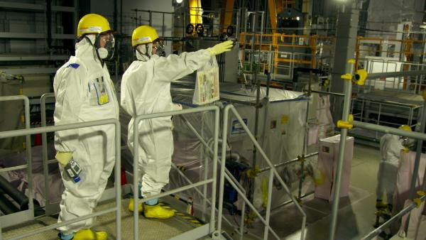 Das Fukushima-Drama - Tsunami, Störfall, Langzeitfolgen