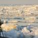 Wildes Russland - Die Arktis