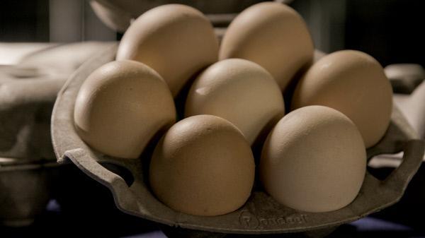 Bild 1 von 3: Eierkartons werden oft aus Kartoffelresten hergestellt.